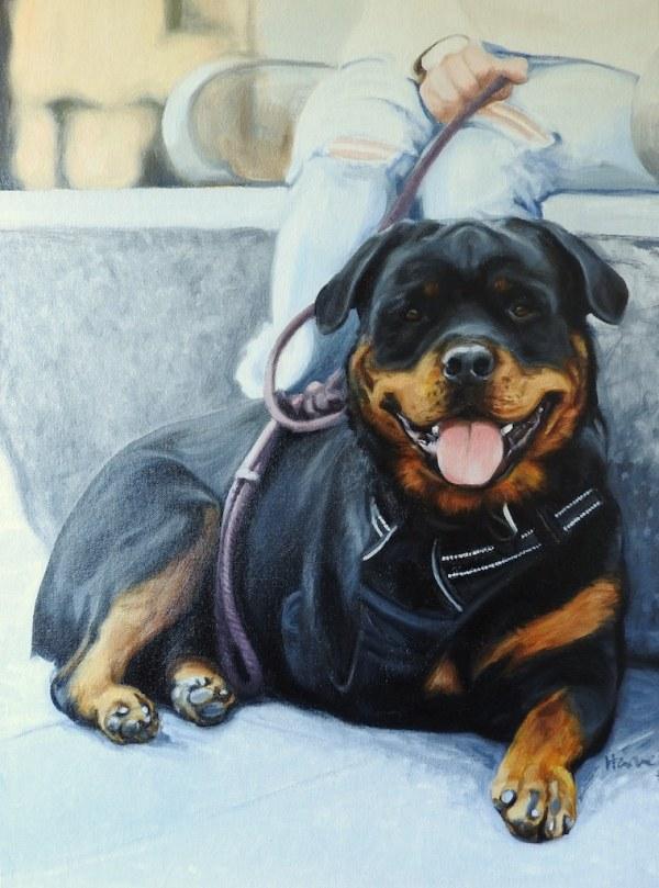Pet portrait of a loved Rottweiler, glazed in oil paints on canvas by portrait artist based in the UK Matt Harvey
